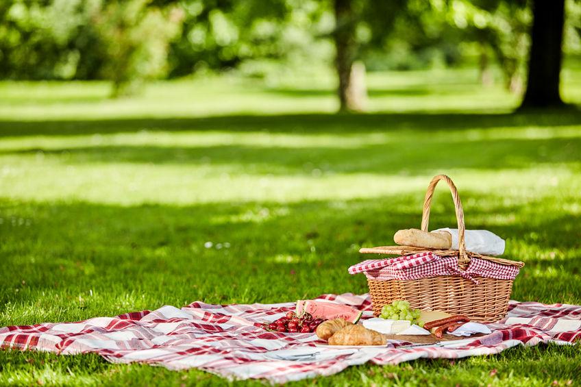 Picnic Etiquette For Outdoor Fun